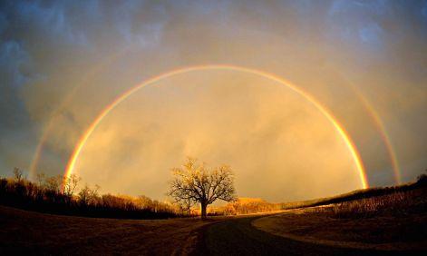 regenbogen-6.jpg