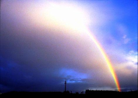 regenbogen-7.jpg